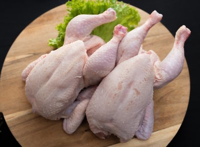 Grote kippen, 1 stuk